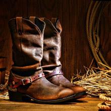 pic-2013-02-cowboyboots